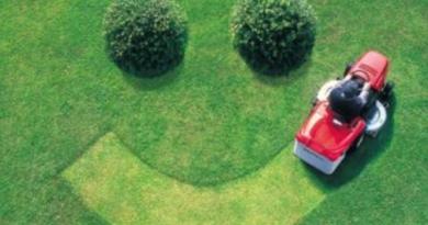 заказать услугу по покосу газона и травы